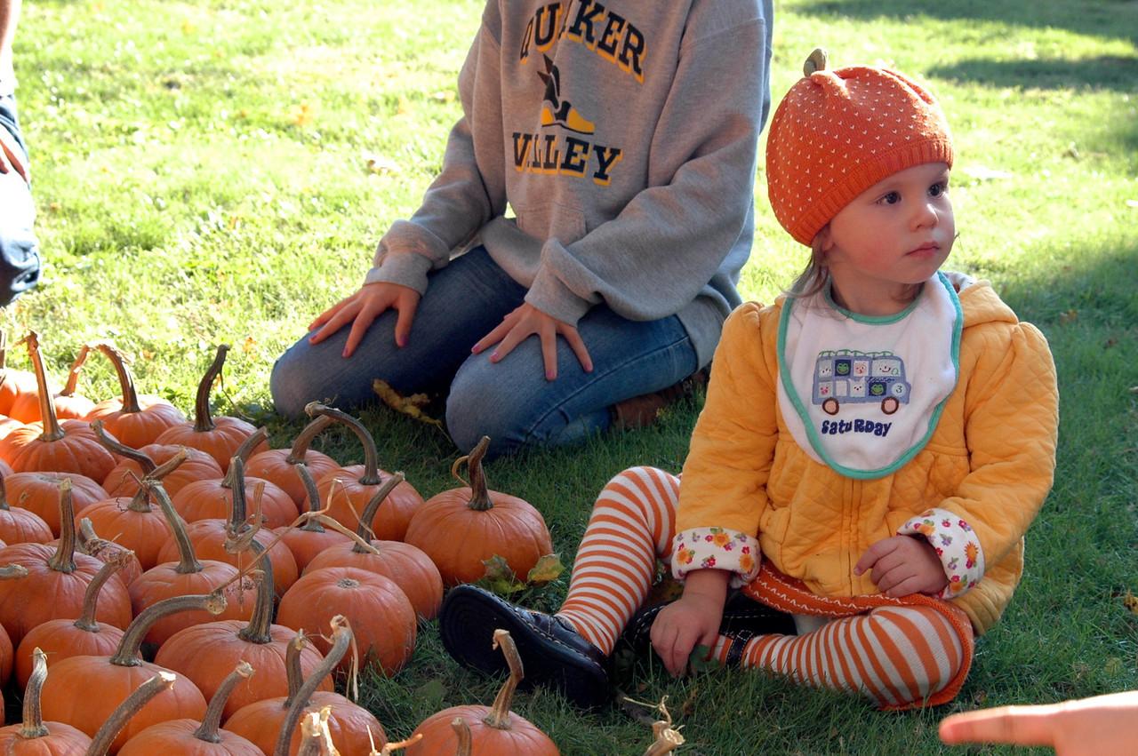 Pumpkin Patch Princess - 4