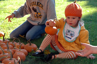Pumpkin Patch Princess - 2