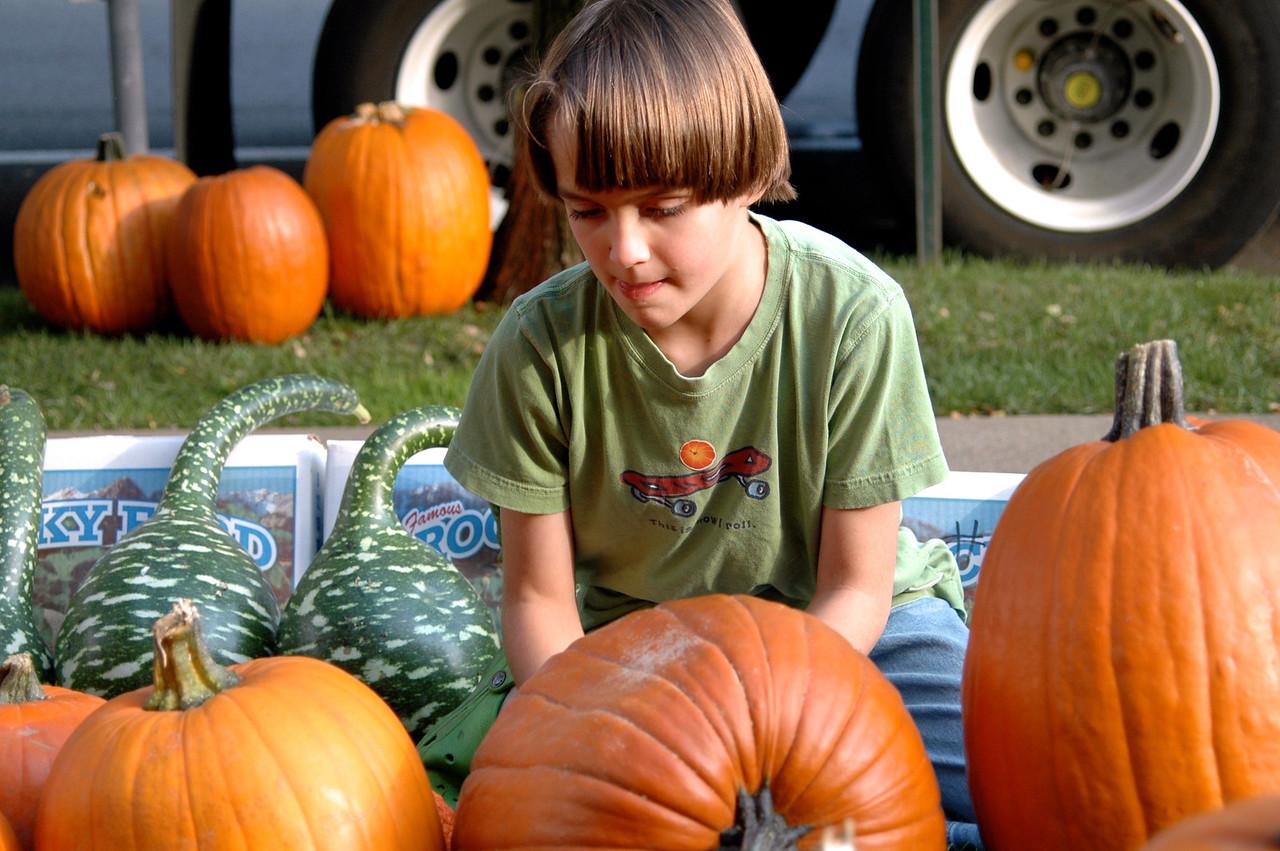 Pumpkin Placement - 8