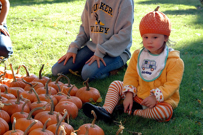 Pumpkin Patch Princess - 3