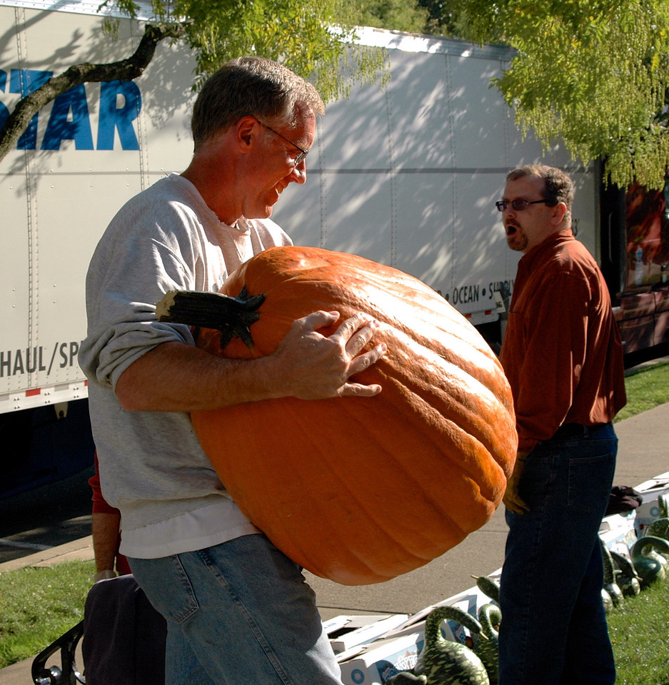 Mother of All Pumpkins - 3