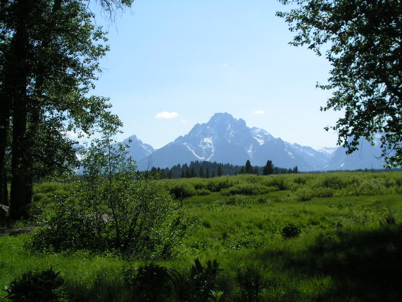 1. Mt Moran as seen from the trail ride to the meal site.