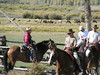 6. A trail ride returns to the TX ranch while the spectators ogle the elk.