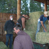13. As some of us finish saddling, others load about 40 bales of hay to put out.