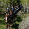 18. Thru the sage or thru the trees, our trail rides are sure to please...