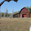 10. A large, ugly piece of equipment was parked on the right side of the barn; I screened it out with this aspen tree.