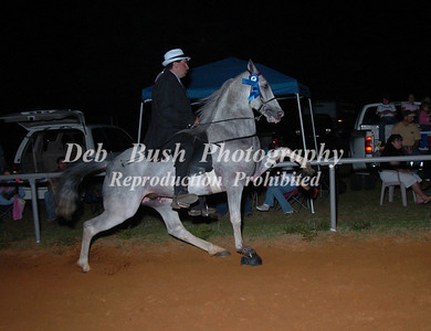 CLASS 26 A URHOEA 4 YR OLD & UNDER OPEN - 2 GAITS