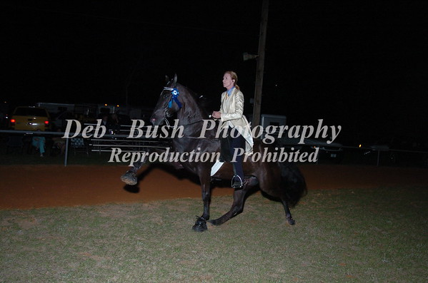CLASS 27  PONY AMATEUR 18 & UP SPECIALTY