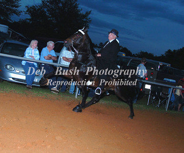 CLASS 29  PONY AMATEUR 18 YRS & UP SPECIALTY