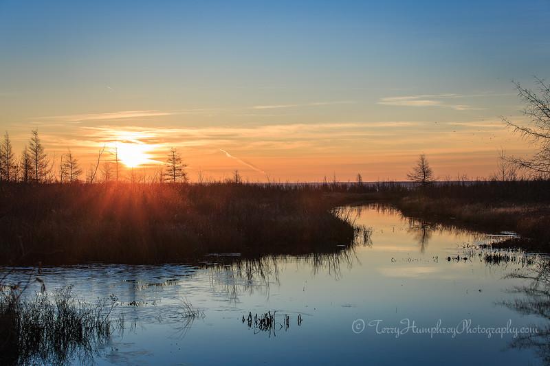 Lone Pine Road Sunrise