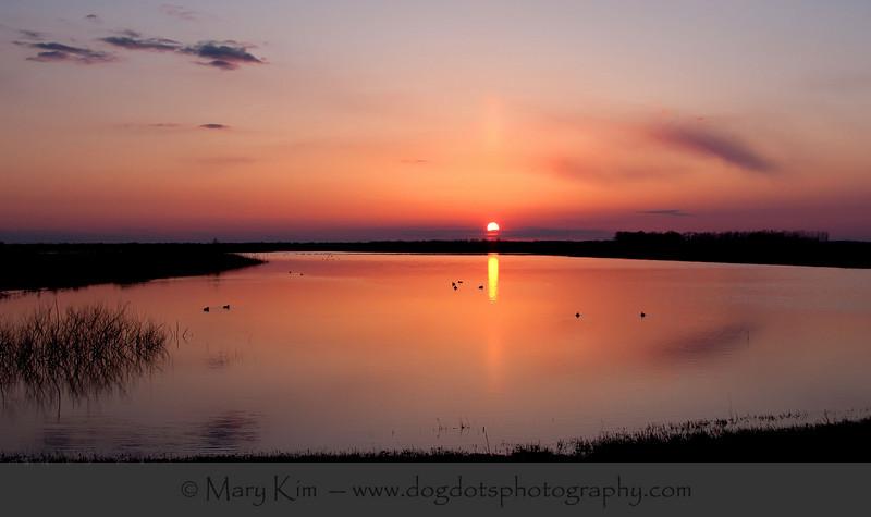 Sunset And Sunrise