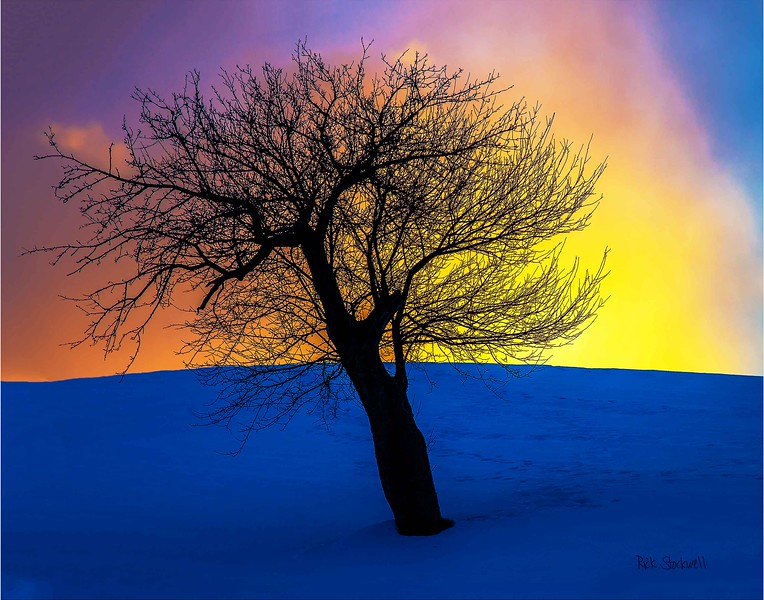 winter Apple sunset