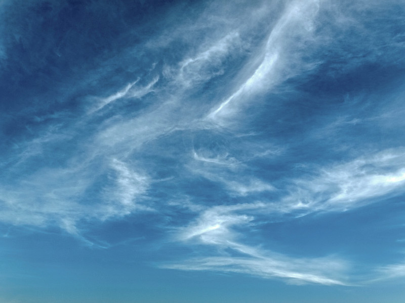 Sky art image. A meteorological sky cloudscape scene, with well developed white Cirrus cloud in a sunny blue sky. Australia.