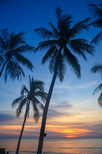 Beautiful Tropical sunrise seascape with Palm trees, Thailand.
