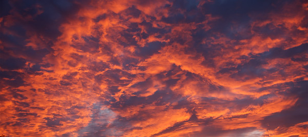 Orange altocumulus Sunrise Skyscape. Australia