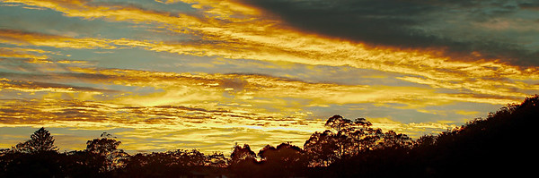 Vibrant Yellow Cloud Sunrise... in Sunrise Gallery.