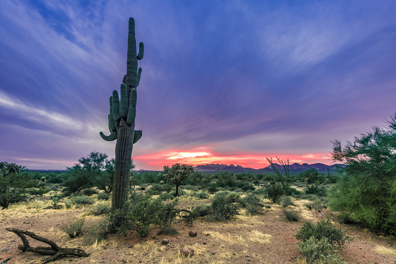 Lost Dutchman Sunset - Arizona
