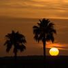 sunset                          1f1