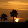 sunset                          1e1