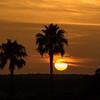 sunset                          1d1