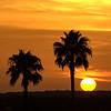 sunset             hr             1f1