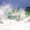WILD WAVE-3