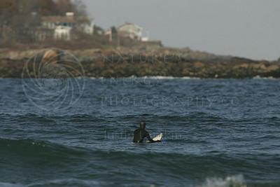 Surfer: Jack Phinney  Huricane Noel Surf, November 4-5 2007