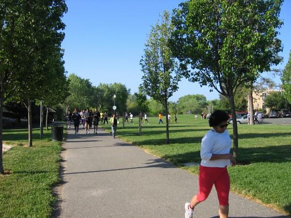 Week 6 Training Run