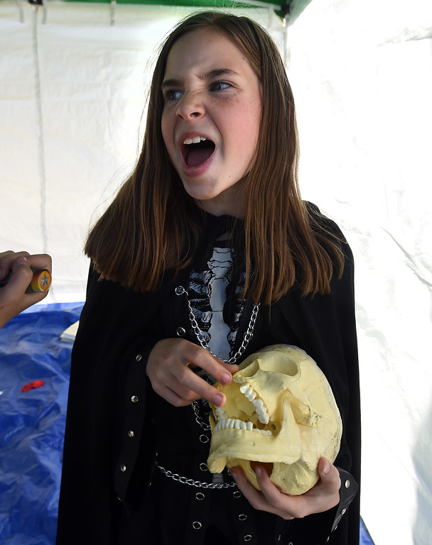 . Piper Forsyth, from Burlington Elementary, found something sharp in the Hamlet skull before their performance. The annual Shakespeare in the Park Festival was held in Longmont on Friday.  Fifth-graders from across the district performed self directed/produced Shakespeare productions. It is organized by St. Vrain\'s Gifted and Talented Program. For more photos and a video, go to dailycamera.com. Cliff Grassmick  Photographer  May 4,  2018
