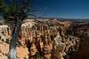 Bryce Canyon-1577