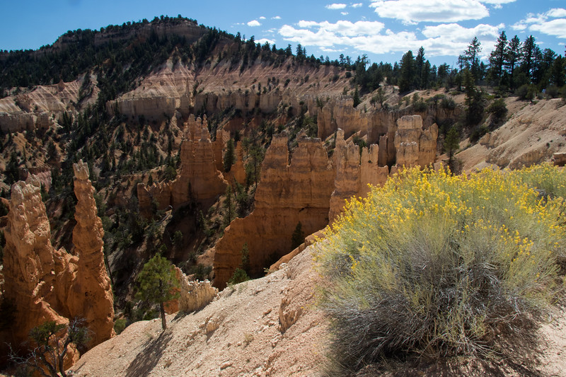 Bryce Canyon-1584
