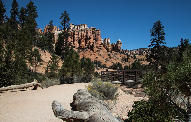 Bryce Canyon-1561
