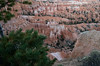 Bryce Canyon-1723