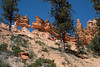 Bryce Canyon-1569