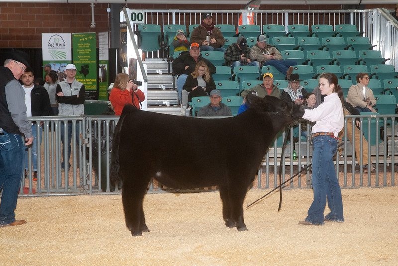 2020_sw_cattle018