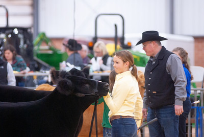 2020_sw_cattle006