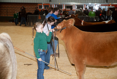 2020_sw_cattle008