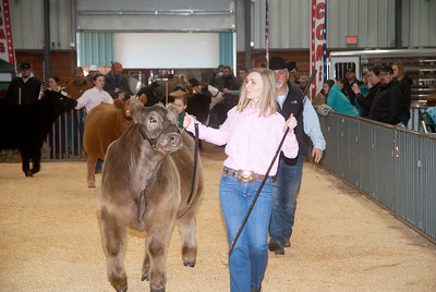 2020_sw_cattle013