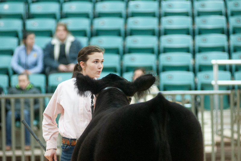 2020_sw_cattle024