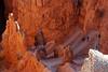 Down Navajo Trail
