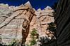 High Walls framing Back Canyon