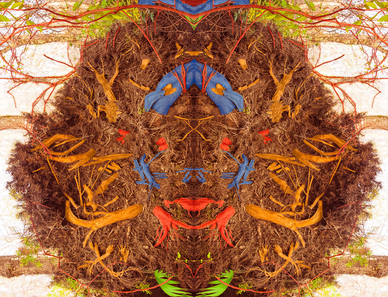 ROOT CLOWN