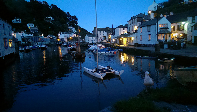 A mobile phone shot of the obligatory sea gull at Polperro harbour.   The B&B was right behind the camera, the room having a view like this.