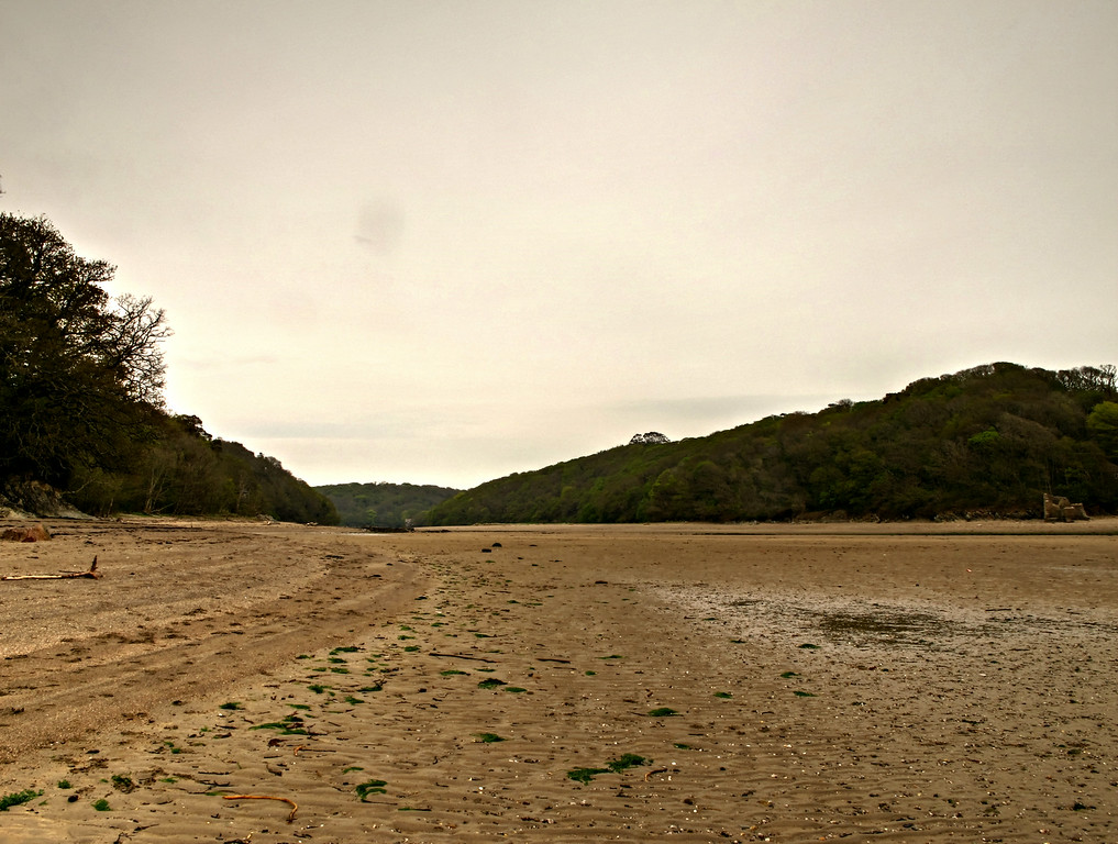 The Erme Estuary.<br /> This area is in private ownership and is left very much in its virgin state.