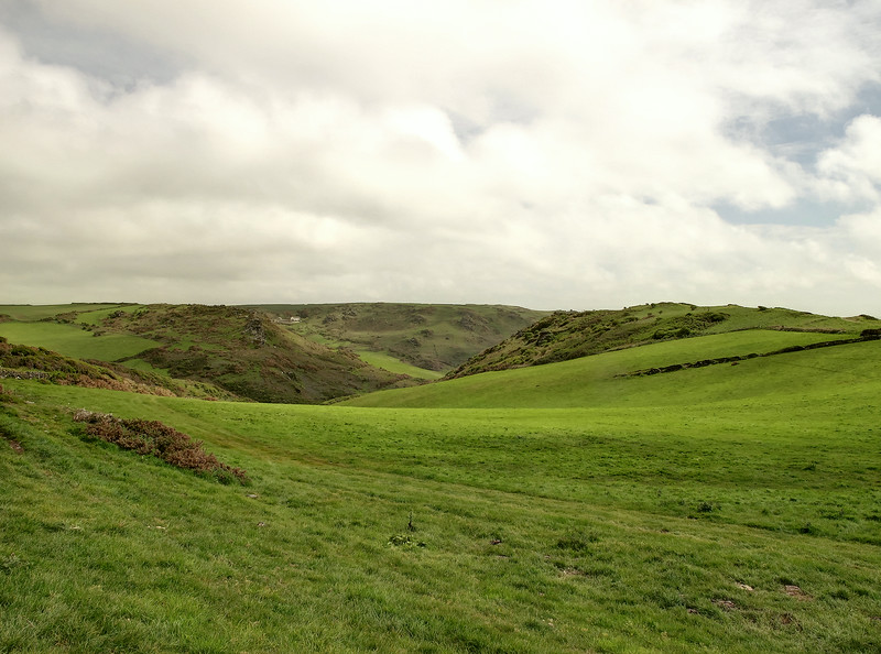 The Warren, a lovely expanse of green with a short stretch of easy walking.