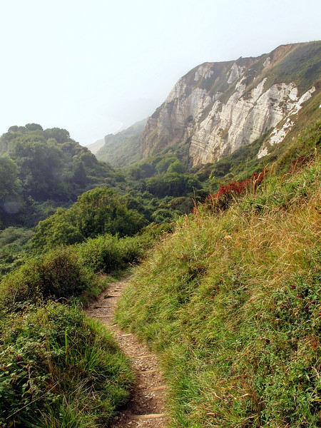 Eventually the path climbs once more to the clifftop.