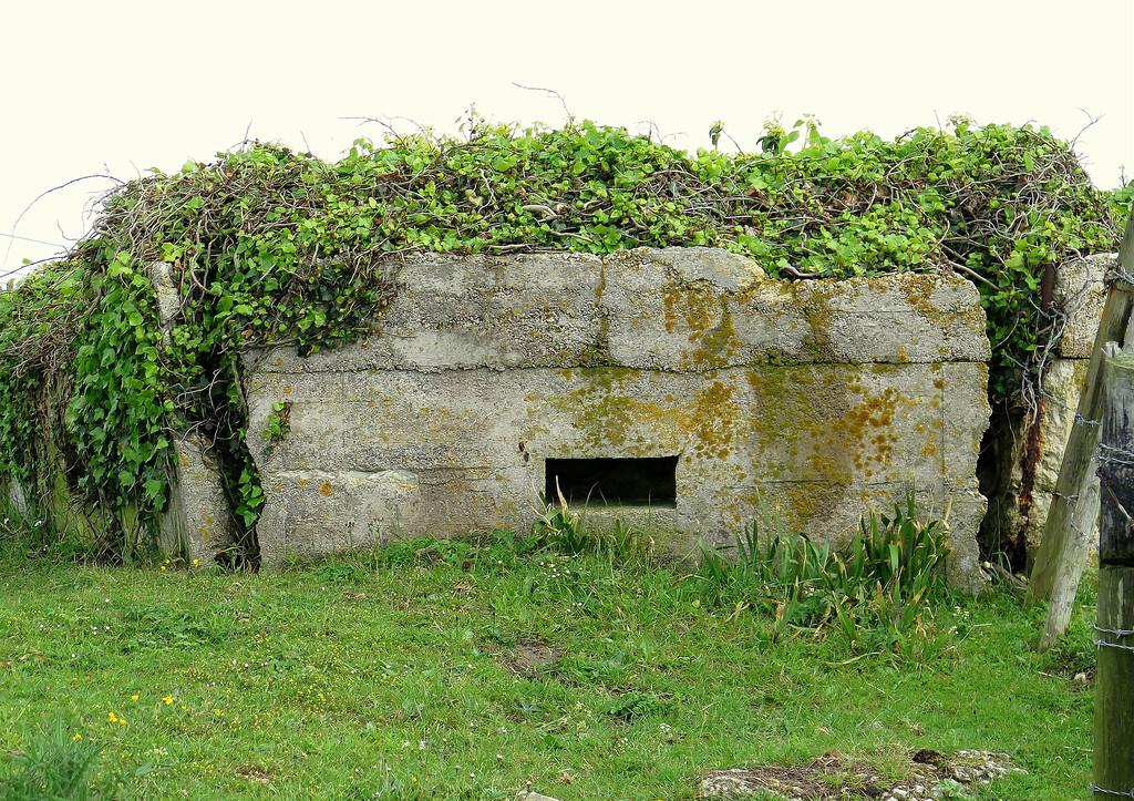 A defensive Pillbox adjacent to the Royal Engineers Bridging Establishment at Wyke Regis