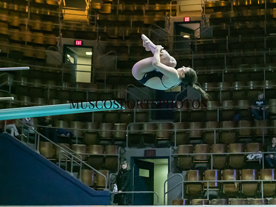 Swimming-diving vs Seton Hall_588