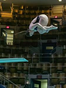 Swimming-diving vs Seton Hall_586