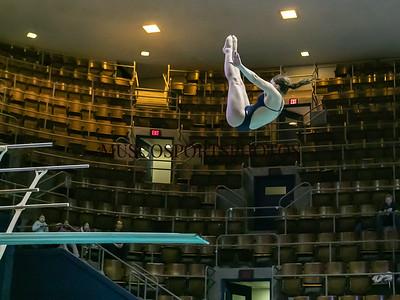 Swimming-diving vs Seton Hall_519